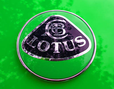 Photograph - Lotus Logo In Spring 7 by Laurie Tsemak