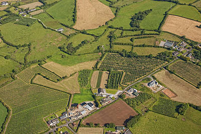 Agronomy Photograph - Loughgall Orchards, Armagh by Colin Bailie