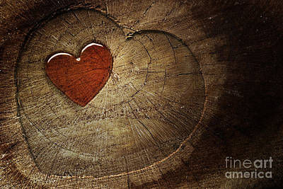 Love Text On  Wooden Background Art Print by Mythja  Photography