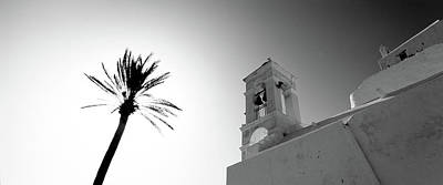 Low Angle View Of A Palm Tree Art Print by Panoramic Images
