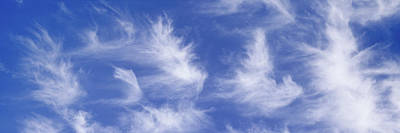 Low Angle View Of Cirrus Clouds Art Print