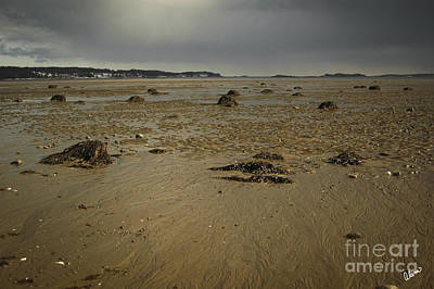 Photograph - Low Tide by Alana Ranney