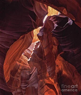 Sandstone Photograph - Lower Antelope Canyon by Liz Leyden