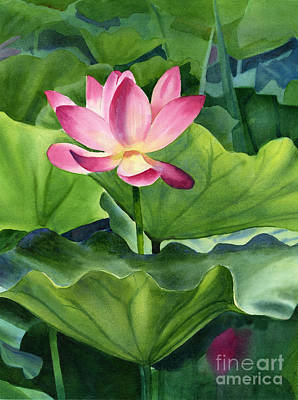 Water Lily Art Painting - Magenta Lotus Blossom by Sharon Freeman