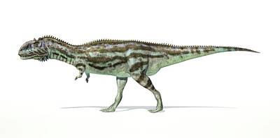 Prehistorical Photograph - Majungasaurus Dinosaur by Leonello Calvetti