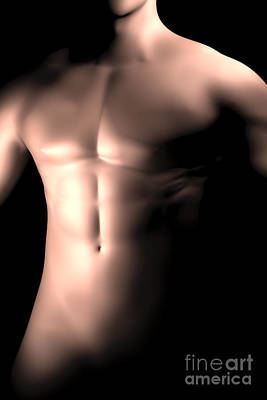 Muscular Digital Art - Male Body, Waist Up by Stocktrek Images