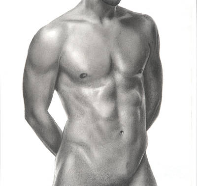 Male Nude Drawing Drawing - Male Nude 10 by Stefano Campitelli