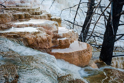 Photograph - Mammouth Terraces by Jack Bell