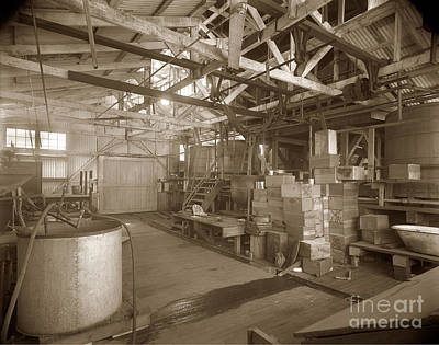 Photograph - Manteca Packing Company Interior California Circa 1920 by California Views Mr Pat Hathaway Archives