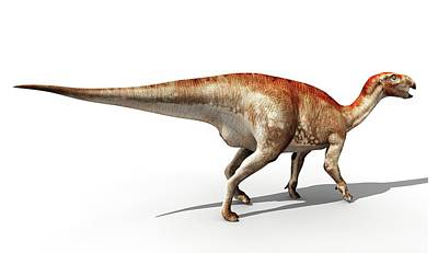 Mantellisaurus Dinosaur Print by Jose Antonio Pe�as