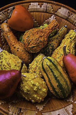 Persimmon Photograph - Many Colorful Gourds by Garry Gay