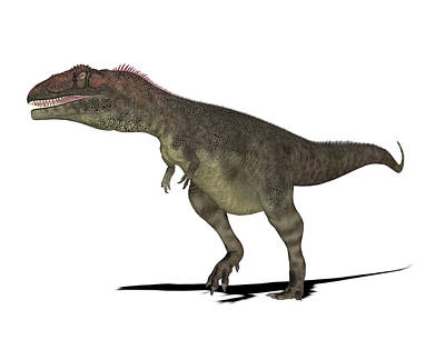 Paleozoology Photograph - Mapusaurus Dinosaur by Friedrich Saurer