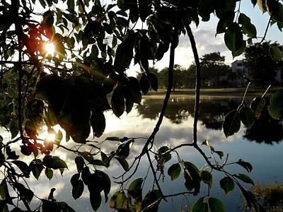 Photograph - March Sunrise by Sheila Silverstein