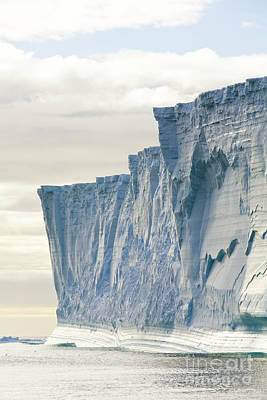 Photograph - Massive Iceberg South Georgia by Yva Momatiuk John Eastcott