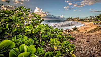 Maui Hawaii Art Print by Edward Fielding