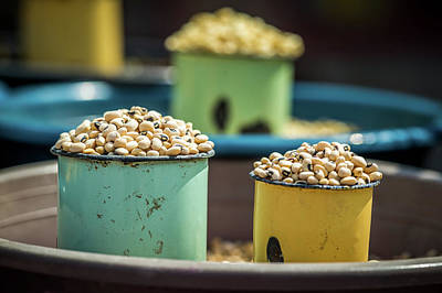 Black Eyed Peas Photograph - Maun, Botswana, Africa- Beans In Cups by Edwin Remsberg