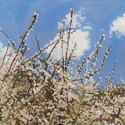 Optimistic Painting - Mayflower by Helen White