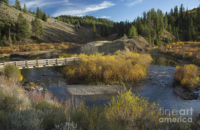 Photograph - Mccoy Creek by Idaho Scenic Images Linda Lantzy
