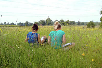 University Of Oxford Photograph - Meadow Plant Identification by Botanic Garden/oxford University Images