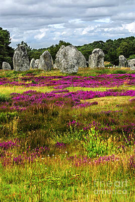 Megalithic Monuments In Brittany Art Print by Elena Elisseeva