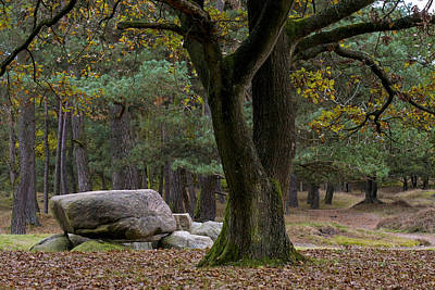 Photograph - Megalithic Tombe by Frits Selier