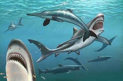 Bite Photograph - Megalodon Prehistoric Shark by Richard Bizley