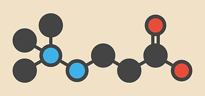 Oxidation Photograph - Meldonium Anti-ischemic Drug Molecule by Molekuul