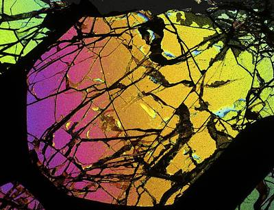 Thin Section Photograph - Meteorite Brenham by Alfred Pasieka