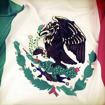 Ruffles Photograph - Mexican Flag by Les Cunliffe