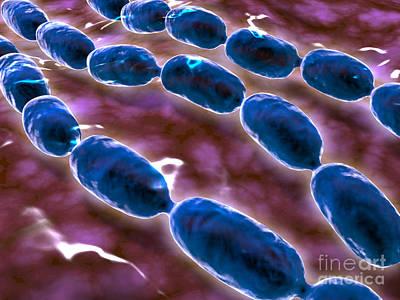 Microscopic View Of Bacterial Pneumonia Art Print by Stocktrek Images