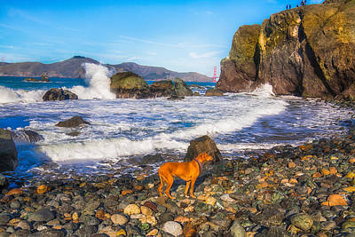 Photograph - Mile Rock Beach by Fernando Margolles