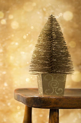 Photograph - Miniature Christmas Tree by Amanda Elwell