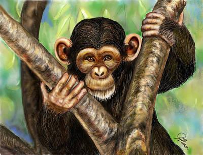 Drawing - Mischievous Monkey by Jennifer Allison