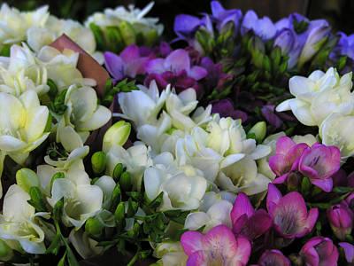 Photograph - Mixed Flowers by Robert Lozen