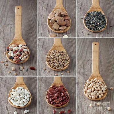 Tile Composition Photograph - Mixed Legumes Collage by Sabino Parente