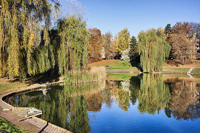 Willow Lake Photograph - Moczydlo Park In Warsaw by Artur Bogacki