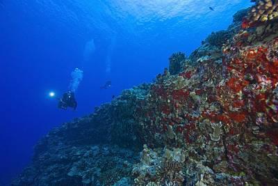 Molokini Maui Hawaii Usa Scuba Diver Art Print by Stuart Westmorland