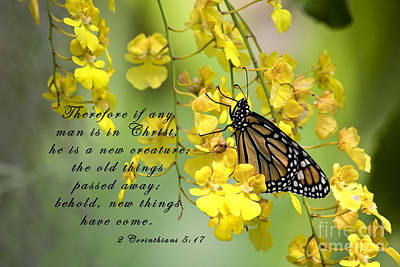 Scripture Photograph - Monarch Butterfly With Scripture by Jill Lang