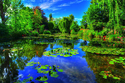Willow Trees Photograph - Monet's Lily Pond by Midori Chan