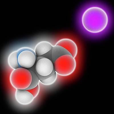 Monosodium Glutamate Molecule Art Print by Laguna Design