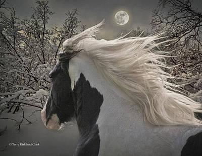 Gypsy Vanner Digital Art - Moonbeams by Terry Kirkland Cook