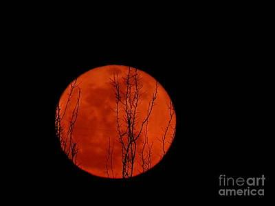 Photograph - Moonrise by Mistys DesertSerenity
