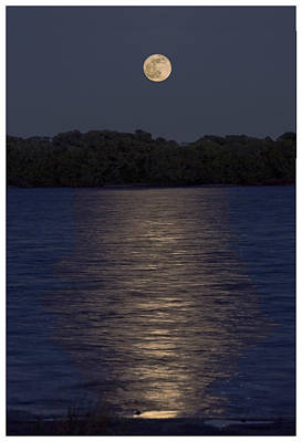 Photograph - Moonrise by Gene Norris