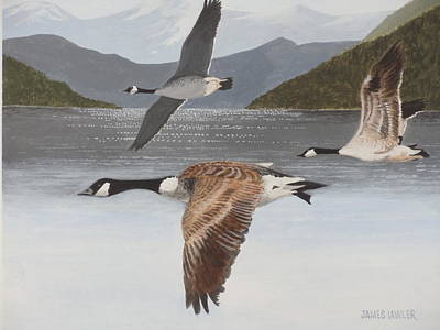 Painting - Morning Flight by James Lawler