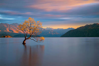 New Zealand Photograph - Morning Glow by Renee Doyle