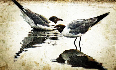 Painting - Morning Gulls Seagull Art By Sharon Cummings by William Patrick