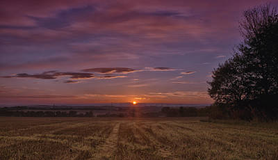 Photograph - Morning In The Fields by Jean-Noel Nicolas