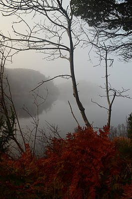Photograph - Morning Mist by Barbara Walsh