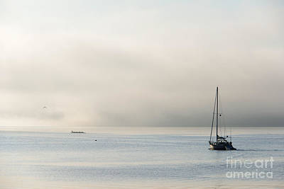 Morning Mist Photograph - Morning Mist by Mike  Dawson
