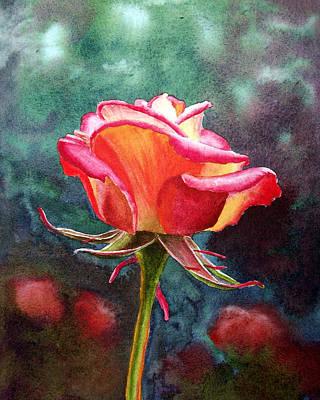 Roses Royalty-Free and Rights-Managed Images - Morning Rose by Irina Sztukowski